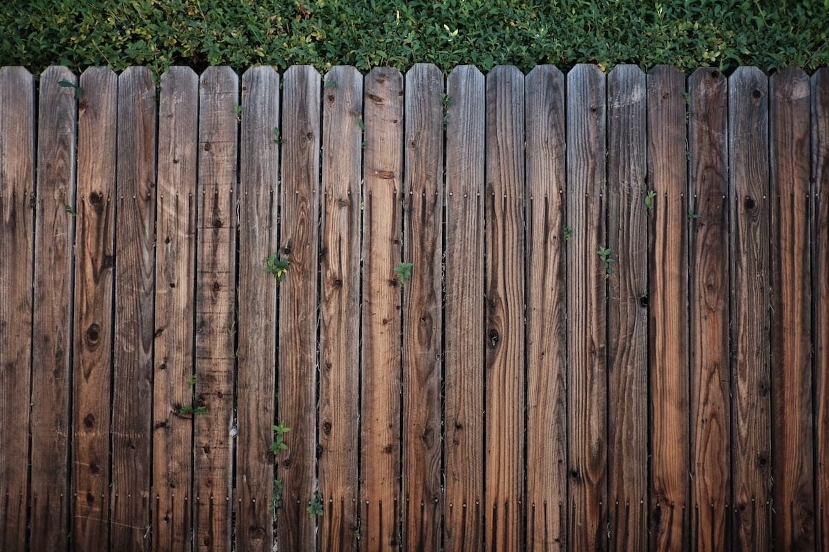 Invisible Fence Brand of Austin